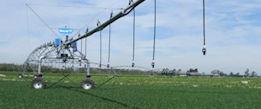 Large Irrigation Design